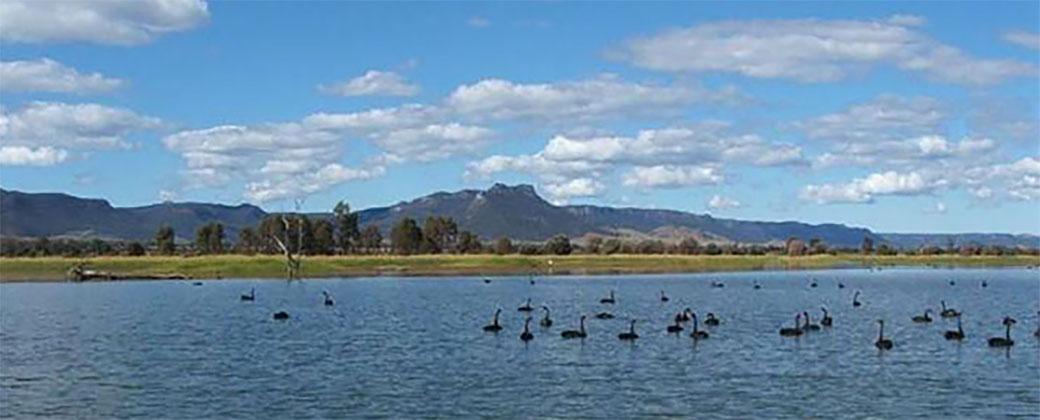 Wetland Dam